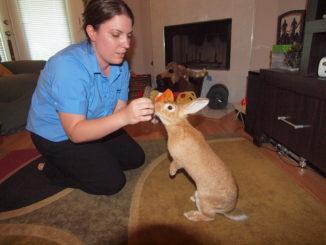 Luling resident Renee Simpson