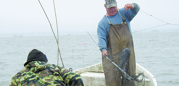 Dufrene nets a white catfish