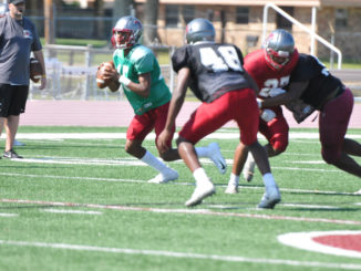 DHS' J.R. Blood rolls out during spring practice.